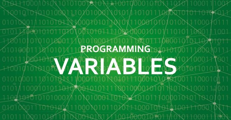 【Java】配列変数とは?大量のデータ処理の強い味方!(変数の応用)