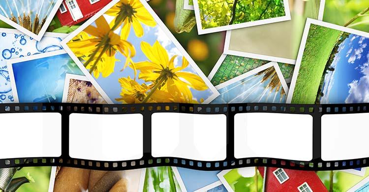 【画像の著作権】フリー素材とは?著作権フリー写真を使うときの注意点