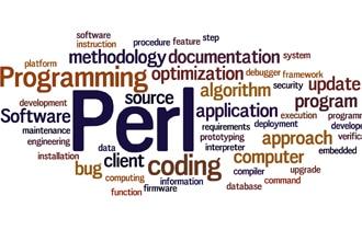 【第9位】Perl